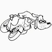 motodog650